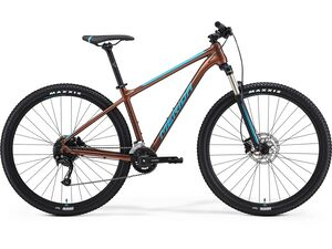 Merida BIG.NINE 100-2X Bronze(Blue) 2021
