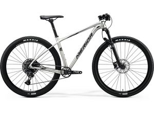 Merida BIG.NINE NX-EDITION Silk Titan(Silver) 2020