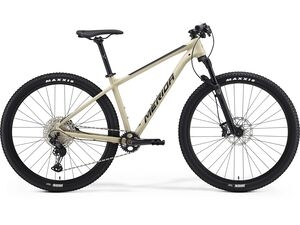 Merida BIG.NINE XT-EDITION Silk Light Sand(Black) 2021
